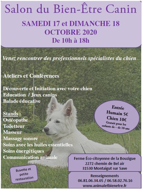 prospectus pour le salon du bien-être canin